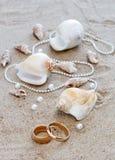 Anillos de bodas y conchas de berberecho en la arena Imagen de archivo