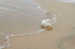 Anillos de bodas y coral en la arena Fotos de archivo libres de regalías