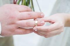 Anillos de bodas y manos Imagen de archivo libre de regalías