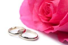 Anillos de bodas y rosa del oro aislados Foto de archivo libre de regalías