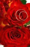Anillos de bodas y rosas Foto de archivo