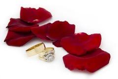 Anillos de bodas y Rose Petals Fotografía de archivo