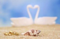 Anillos de bodas y shell del mar Fotografía de archivo libre de regalías