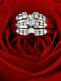 Anillos de diamante en una rosa Foto de archivo