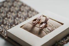 Anillos de la novia y del novio Fotografía de archivo libre de regalías
