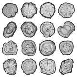Anillos de madera, tronco de árbol del sawcut ilustración del vector
