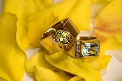 Anillos de oro Fotografía de archivo libre de regalías