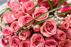Anillos de oro y ramo color de rosa Foto de archivo
