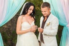 Anillos del desgaste de novia y del novio Imagen de archivo libre de regalías
