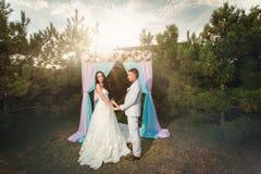 Anillos del desgaste de novia y del novio Foto de archivo