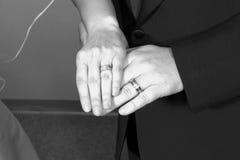 Anillos del recién casado Fotografía de archivo libre de regalías