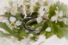 Anillos y flores blancas Imagen de archivo