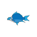 Anilmal blue fish Stock Photography