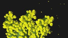 Animação abstrata da árvore amarela pintada com folhas de queda em um fundo preto Autumn Leaves ilustração do vetor
