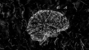 Animação do cérebro, mineração de dados, estudo detalhado da informática moderna O modelo do cérebro humano consistiu em muitos ilustração stock