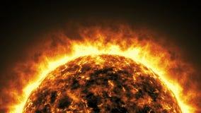 Animação viva do sol video estoque