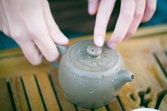 Anima di tè verde Immagine Stock Libera da Diritti