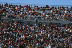 Anima di vita di NASCAR Immagini Stock