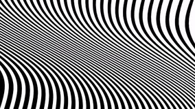 Animación blanco y negro psicodélica con las rayas onduladas Vídeo óptico del arte almacen de metraje de vídeo