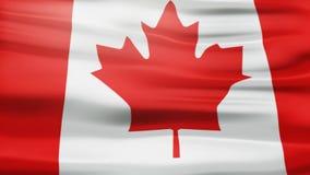 Animación canadiense de la bandera ilustración del vector