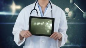 Animación de Digitaces de la célula que se multiplica en la pantalla digital de la tableta almacen de video