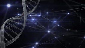 Animación de la DNA en un fondo oscuro con las conexiones ligeras ilustración del vector