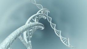 Animación de la DNA genética representación 3d ilustración del vector