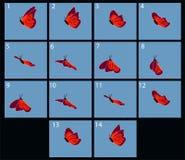 Animación de la mariposa flaing libre illustration