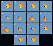 Animación de la mariposa flaing Fotos de archivo libres de regalías
