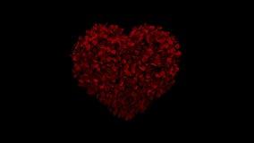 Animación del corazón de los pétalos color de rosa libre illustration