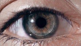 Animación del interfaz de la tecnología de la exploración del ojo humano Primer del ojo cibernético de alta tecnología metrajes