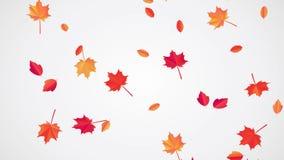 Animaci?n descendente de Autumn Leaves stock de ilustración
