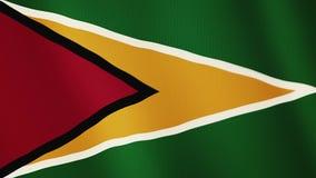 Animación que agita de la bandera de Guyana De plena pantalla Símbolo del país ilustración del vector