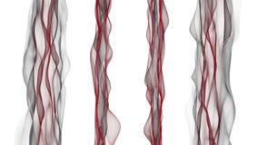 Animación romántica con el objeto de la onda en la cámara lenta, 4096x2304 lazo 4K ilustración del vector