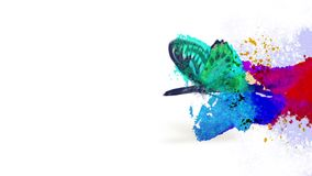 Animaci stylowa dekoracyjna przemiana z motylem