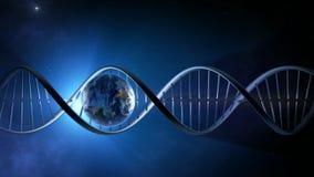 Animación abstracta de la tierra dentro de un filamento de la DNA que brilla intensamente - colocado metrajes