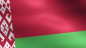 Animacja pełna trzepotliwa flaga państowowa Białoruś odizolowywał na bielu ilustracji