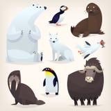 Animais árticos ajustados Fotos de Stock Royalty Free