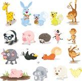 Animais Imagens de Stock
