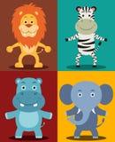 Animais africanos da selva Imagens de Stock