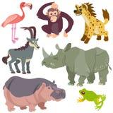 Animais africanos dos desenhos animados ajustados Imagem de Stock
