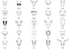 Animais ajustados Fotografia de Stock