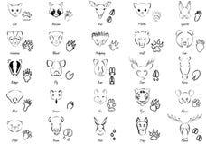 Animais ajustados Imagens de Stock Royalty Free