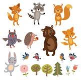 Animais ajustados Foto de Stock