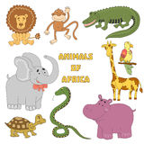 Animais ajustados Coleção animal africana com crocodilo, tartaruga, serpente, leão, hipopótamo, elefante, macaco, papagaio, giraf Fotos de Stock