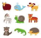 Animais bonitos dos desenhos animados Fotografia de Stock Royalty Free