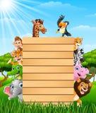 Animais com uma madeira vazia do sinal na floresta Fotos de Stock Royalty Free