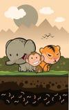 Animais da selva Fotos de Stock Royalty Free