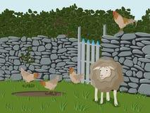 Animais de exploração agrícola Imagens de Stock Royalty Free