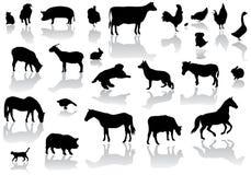 Animais de exploração agrícola ilustração do vetor